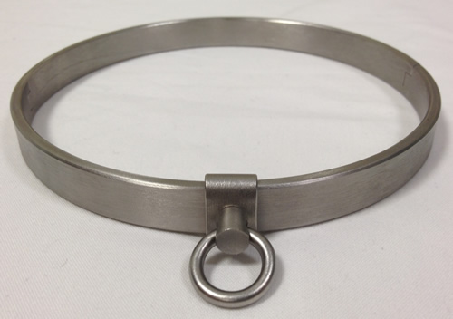 Steel Puppy Collar