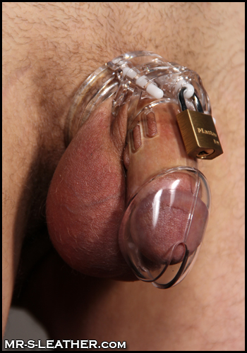 cb-6000 cock cage for male chastity