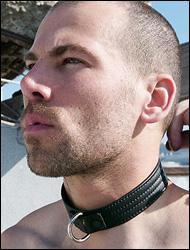 leather-collar